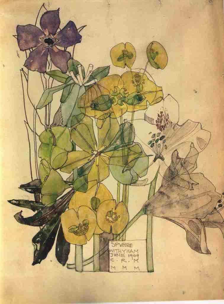 Charles Rennie Mackintosh Spurge With Yham, c. 1909. Reprint